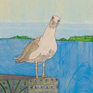 Seagull-FB