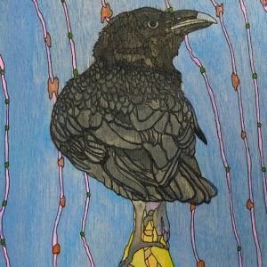 Blackbird-FB