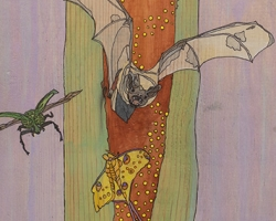Bats with Luna Moth